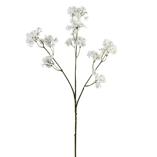 Ashland Baby S Breath Spray