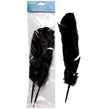 Creatology Feathers, Black Quills