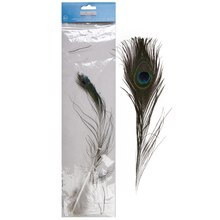 Creatology Feathers, Peacock
