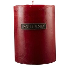 "Ashland Pillar Candle, Juicy Apple 3"" x 4"""