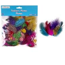Creatology Feathers, Guinea Hen