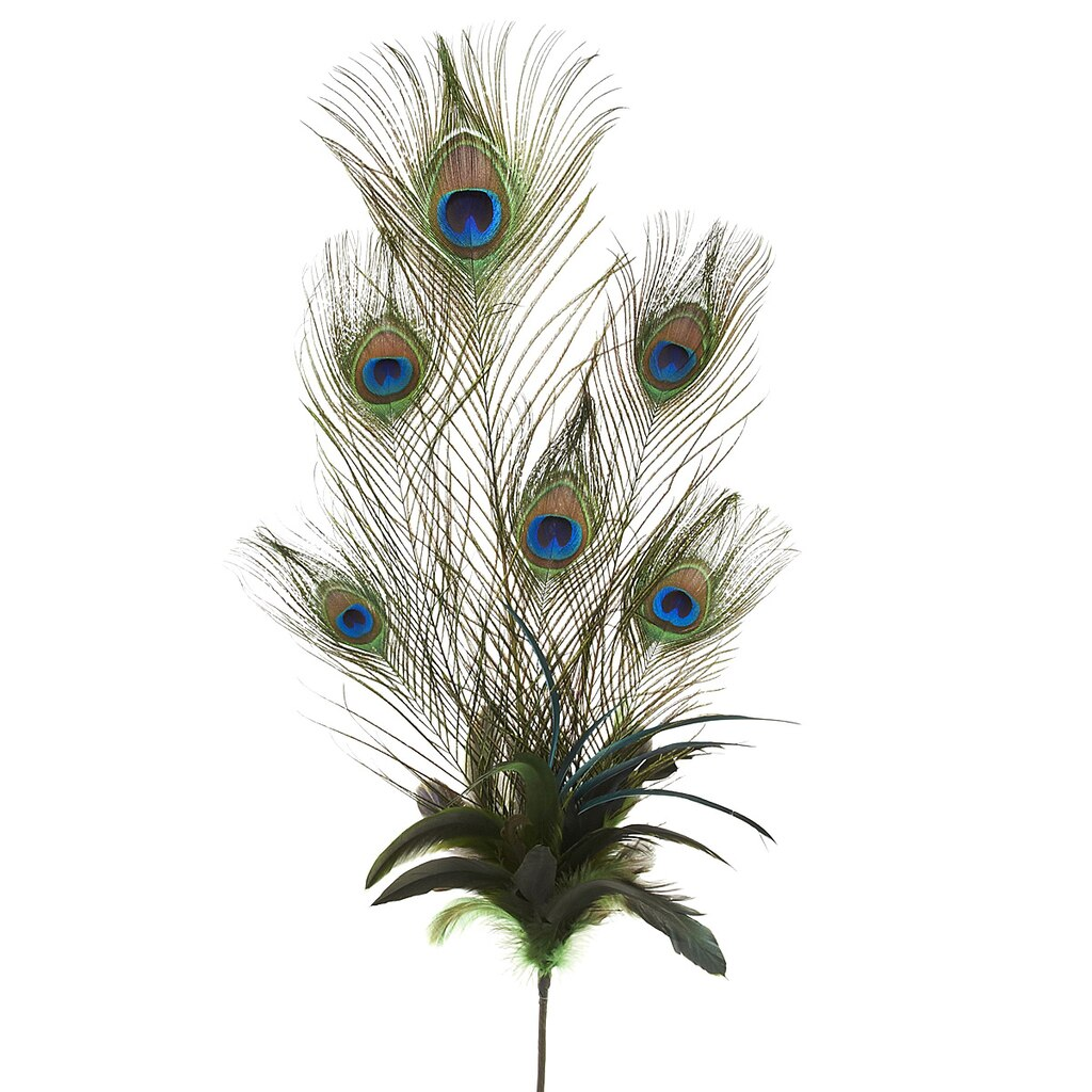 100 French Feathers Home Decor And Accessories