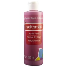 Basic paint for Craft smart acrylic paint