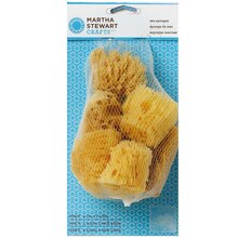 Martha Stewart Crafts Sea Sponge Set