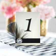 Feather Table Number