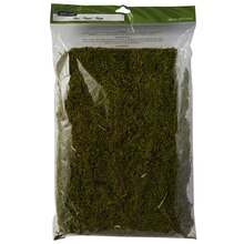 Ashland Preserved Moss, Forest Green