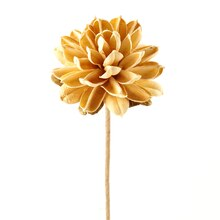 Ashland Dried Floral Ball Mum, Ivory