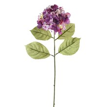 "Ashland Hydrangea Stem, 28"" Purple"