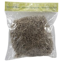 Ashland Spanish Moss 8 oz
