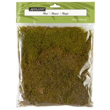 Ashland® Preserved Moss 105 Cu In Forest Green