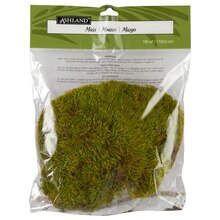 Ashland Preserved Moss 105 Cu In Natura