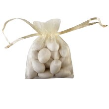 Celebrate It Occasions Organza Bags, Ivory