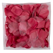 Celebrate It Occasions Decorative Rose Petals, Fuchsia