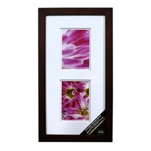 Walnut 2-Opening Gallery Frame with Double Mat by Studio Décor