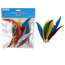 Creatology Feathers, Assorted Goose
