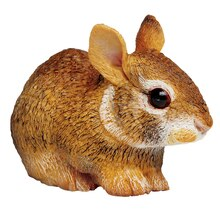 Safari Ltd Eastern Cottontail Rabbit Baby