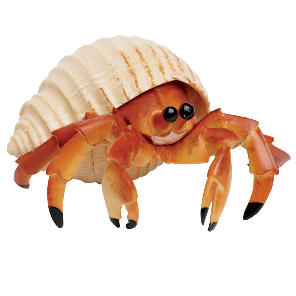 Safari Ltd 174 Hermit Crab