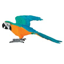 Safari Ltd Blue & Gold Macaw