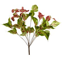 Ashland Real Touch Collection Coleus Plum Bush
