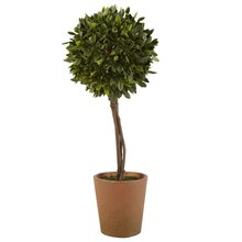 Ashland Classic Traditions Small Potted Boxwood Topiary
