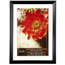 "Studio Décor Lifestyles Black Frame With Mat, 12"" x 18"""