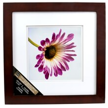 "Studio Decor Gallery Float Frame, Walnut 8"" x 8"""