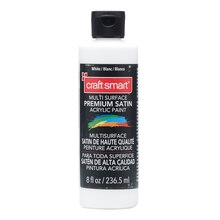 White Satin Acrylic Paint by Craft Smart