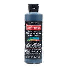 Craft Smart Premium Satin Acrylic Paint