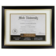 Studio Décor Document Frame With Mat, Black and Gold