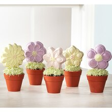 Flower Cookie Pops in Silicone Pot