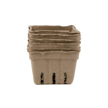 Recollections Craft It Paper Berry Baskets, Natural