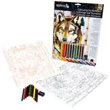Reeves Color Pencil by Numbers, Wolf