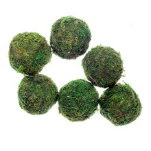 Moss Ball Decor