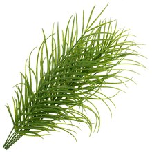 Palm Plant Bush by Ashland®, medium