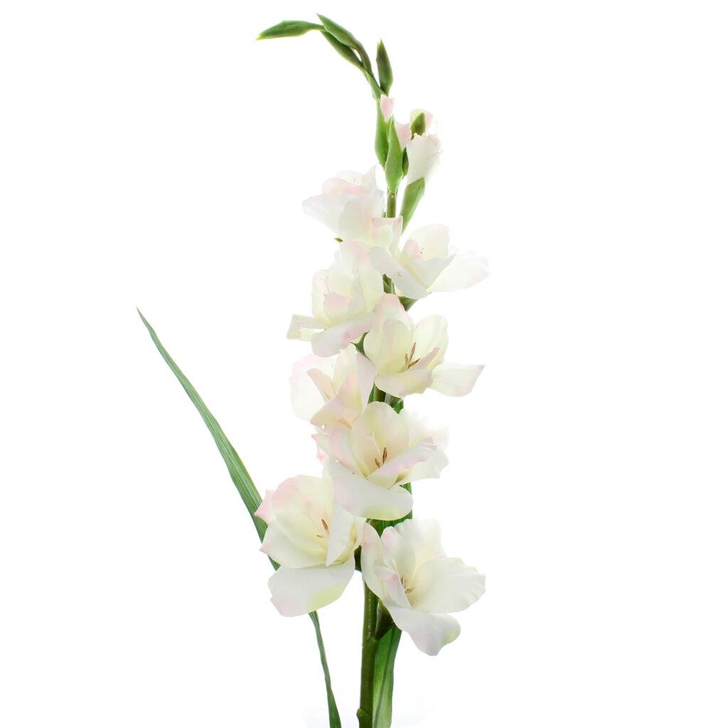 Flower Arrangements Home Decor 111 Best Shrubs Png Images On Pinterest Flower 31 Beautiful