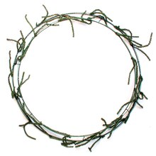 Wire Wreath Frame With Ties by Ashland