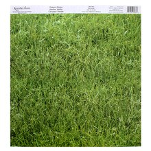 Green Grass Scrapbook Paper by Recollections
