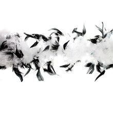 Black & White Feather Boa by ArtMinds