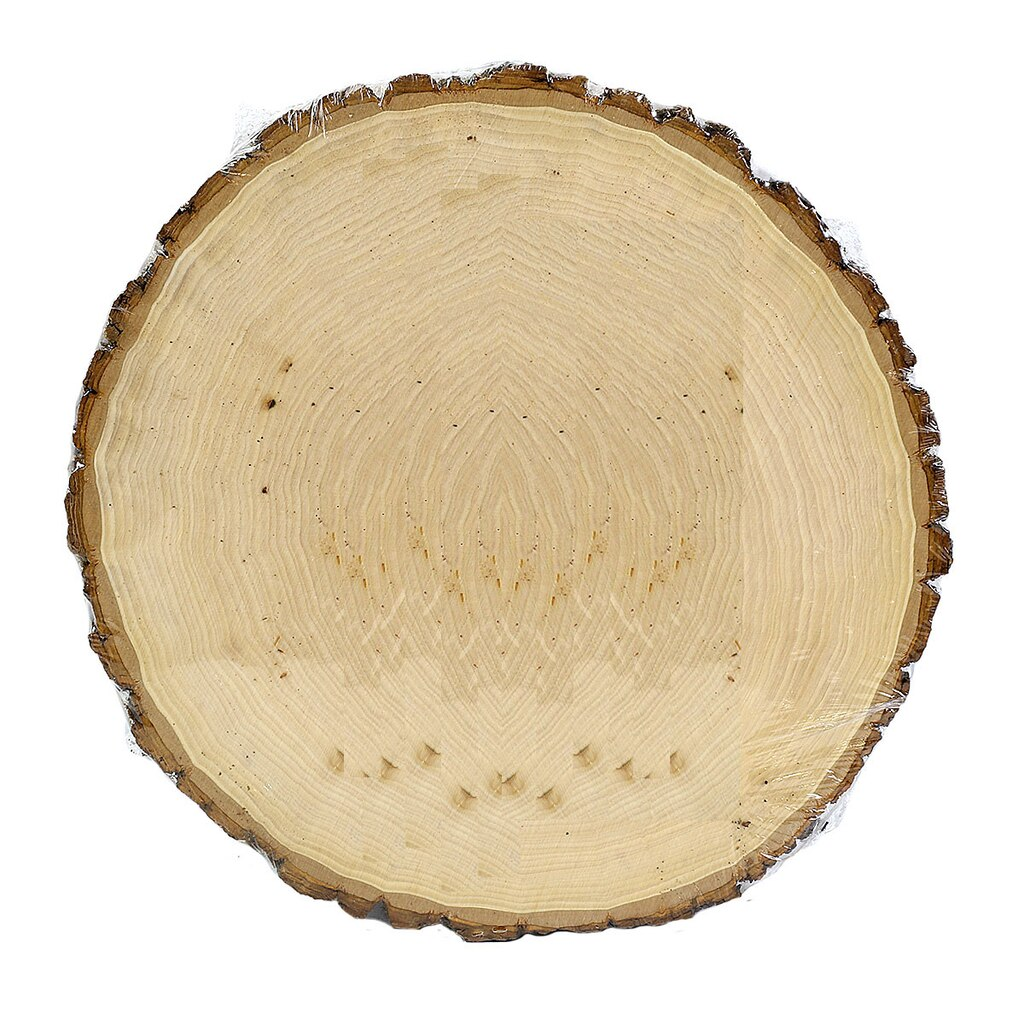 Round Plaque By ArtMinds Basswood