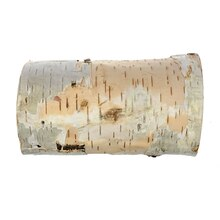 "7"" Birch Pillar by ArtMinds"