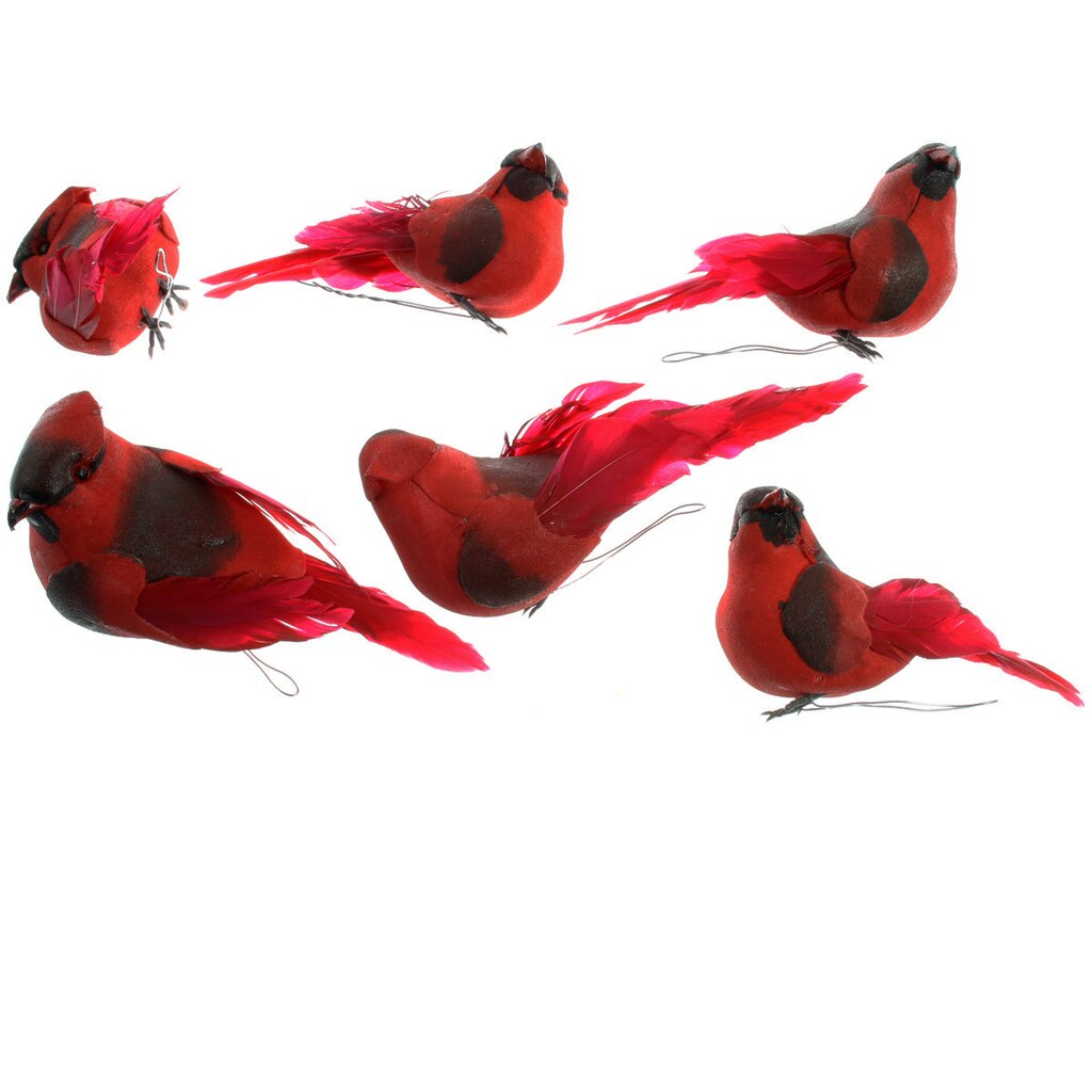 Red Cardinal by Ashland®