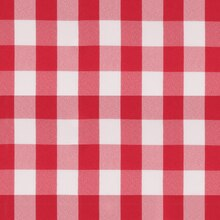 Red Picnic Check Poplin