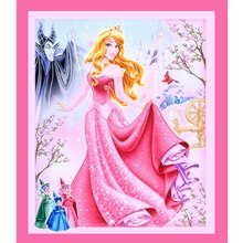 Disney Sleeping Beauty Panel