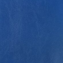 Seaquest Royal Blue Vinyl