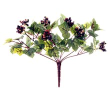 Mini Grape Bush with Berry by Ashland®, medium
