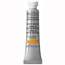 Burnt Sienna Winsor & Newton® Professional Water Colour™ Paint Tube, medium