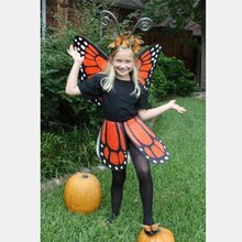 Magnificent Monarch Butterfly Costume, medium