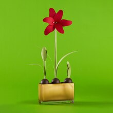 Paper Amaryllis, medium