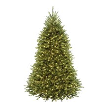 9 Ft. Pre-Lit Northern Dunhill Fir Full Artificial Christmas Tree, Warm Clear LED Lights