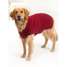 Lion Brand® Vanna's Choice® Clifford Dog Knit Sweater, medium